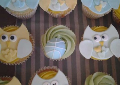 Baby Shower Owl Cupckakes